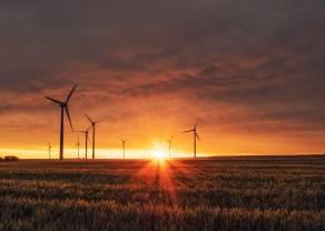 AMLO acusa fraudes en contratos de energía eléctrica