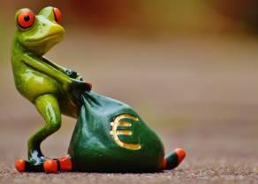 Divisas; Breve repaso al comienzo de semana en el Euro contra Franco Suizo y Dólar Estadounidense