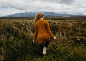 El cambio Dólar Neozelandés Dólar Estadounidense (NZDUSD) rumbo a buscar puntos de apoyo