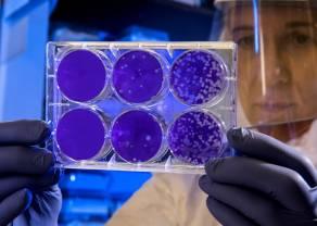 El coronavirus y su impacto en las Bolsas