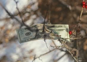 ¡El dólar está cayendo frente al franco suizo! La libra y el euro intentan recuperarse.