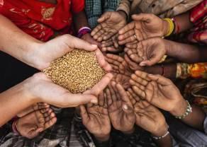 Inflación: Precios más altos de la comida contribuyen al aumento del 40% en el hambre a nivel mundial