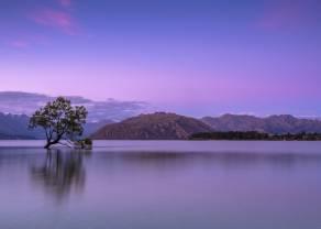 Kiwi: acelerando la caída al quebrar soportes críticos