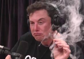 El nuevo drama de Elon Musk se refleja en las criptomonedas ¿Qué esperamos ver en las próximas hora en criptomonedas como bitcoin, ethereum o dogecoin? BTC, ETH, DOGE..