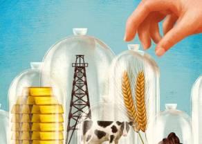 ¡Las commodities nos dejan en blanco! ¿Inviertes en cereales? Analizamos las cotizaciones de soja y maíz