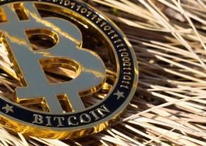 ¡Los 3 mejores TIPS de los inversores del Bitcoin! BTC