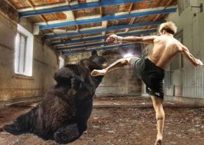 Los intentos de los osos no pudieron con el Dow