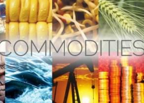 ¿Qué son los pares/divisas de commodities? Ejemplos de pares de commodities