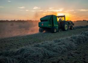 Recuperaciones desiguales en las materias primas agrícolas