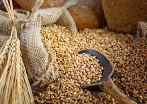 ¿Se salvarán los precios del trigo?