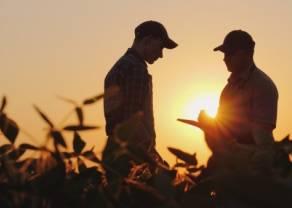 Siguen subiendo los precios de las materias primas agrícolas