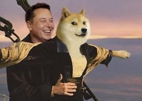 Uyuyuy, la que se avecina con Dogecoin ¡¡Binance Coin promete!! Intentamos multiplicar el dinero con el precio de 15 dolares por Polkadot