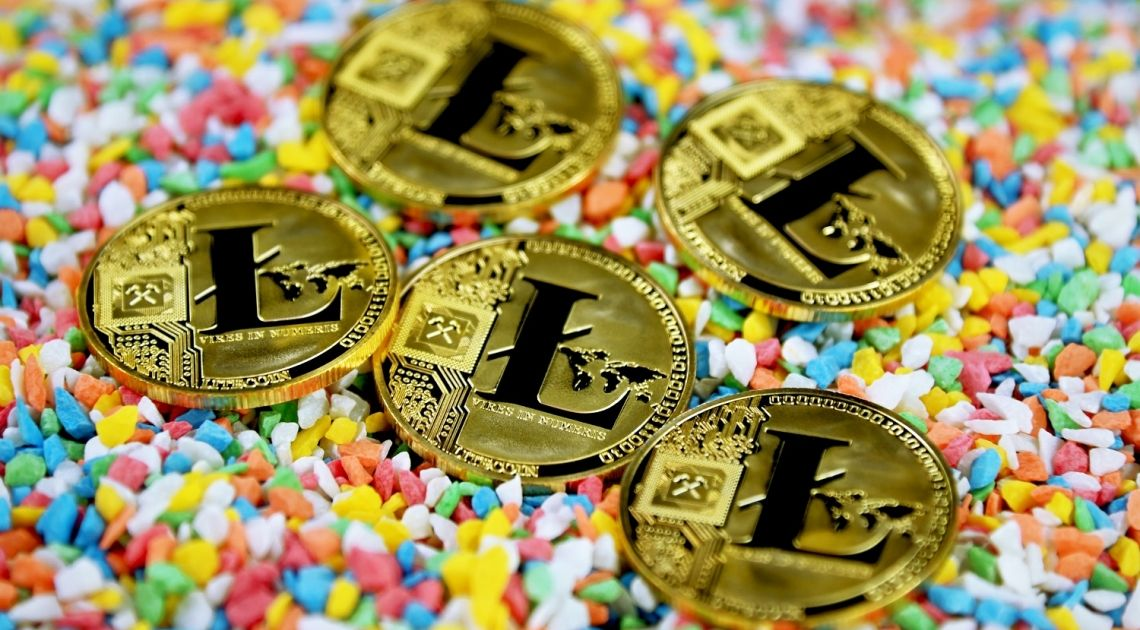 Litecoin is approaching 162.00 USD, the price of the polkadot and the solana also recovers against the dollar