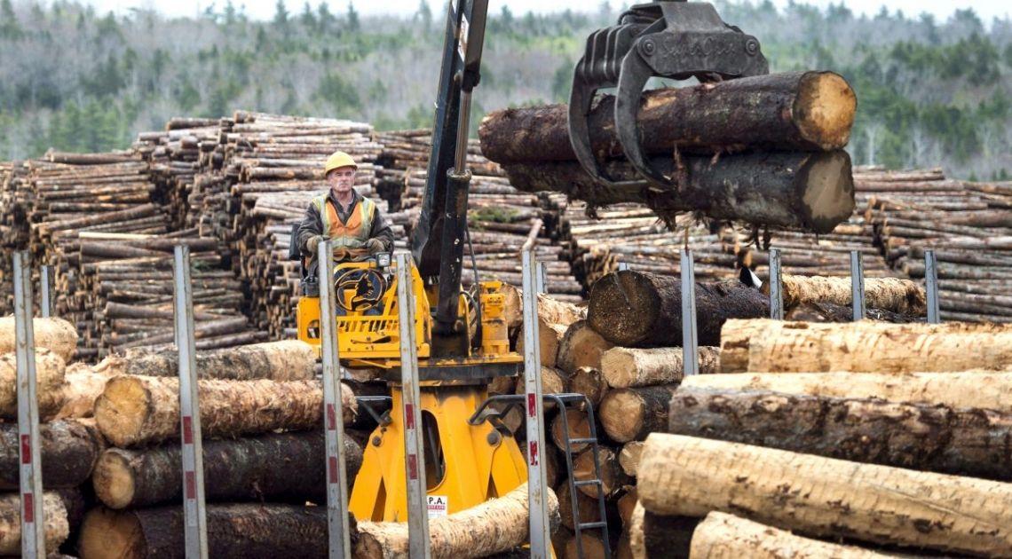 La madera podría enfrentarse a una corrección