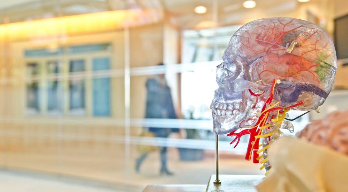 Necesitas entrenar tu cerebro para que se comporte correctamente después de la última jugada