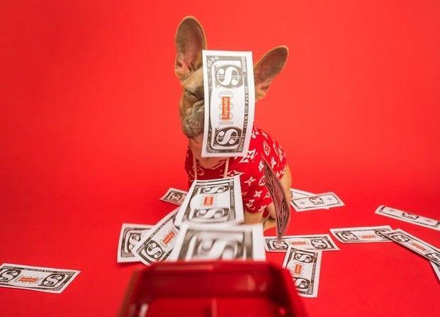 No te pierdas la oportunidad de inversión en el cambio Euro Libra. El Euro abandona los 13 Dólares, mientras que el cambio Euro Yen creciendo en demanda