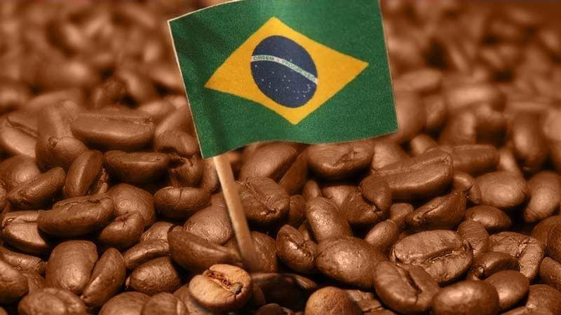Se espera que la cosecha de café de Brasil sea menor. ¿Continuará el rebote de los precios de CAFÉ?