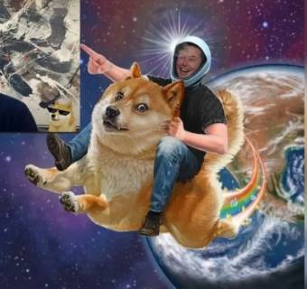 ¡La mememoneda (Dogecoin) hace millonario a G. Contessoto! ¿Será Cardano la que eleve el mercado de las criptomonedas por las nubes? Casi un 11% de ganancias para Binance Coin